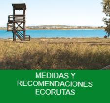 medidas y recomendaciones -