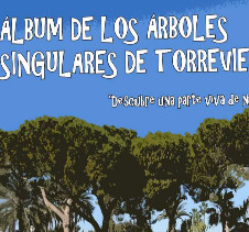 Arboles singulares de Torrevieja - 4,38Mb