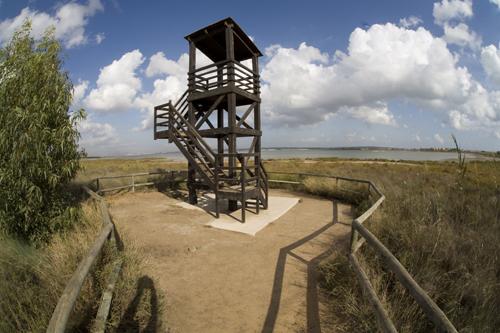 Rutas turisticas turismo de torrevieja for Oficina turismo torrevieja